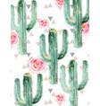 cactus pattern watercolor summer exotic vector image vector image
