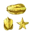 carambola fruit on white background vector image vector image