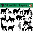 collection of silhouettes of alpacas vector image vector image