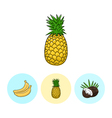 Fruit Icons Pineapple Banana Coconut