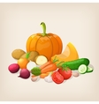 Harvest juicy and ripe vegetables vector image