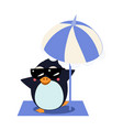 penguin with umbrella on iceberg vector image vector image