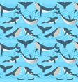 seamless pattern with whale in ocean waves vector image vector image