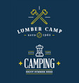 summer camp axe and lantern on chalkboard vector image