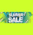 summer salehorizontal banner design concept vector image vector image