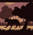 tiger in the jungle black silhouette vector image vector image