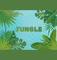 tropical template banner vector image vector image