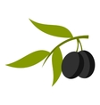 Olive icon cartoon style vector image