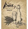 beer hops glass bottle ears vector image vector image