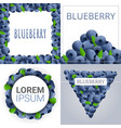 bilberry banner set cartoon style vector image