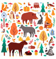 cartoon autumn animals cute woodland birds and vector image vector image