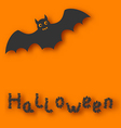 Cartoon bat with with text on orange background vector image vector image