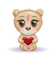 cute cartoon bear with big eyes and holding vector image vector image