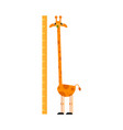 funny giraffe cartoon character with long neck vector image