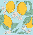 lemon background hand-drawn fruit pattern with vector image vector image