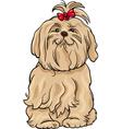 Maltese dog cartoon vector image