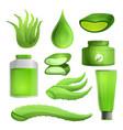 aloe vera icon set cartoon style vector image vector image