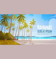 bahamans sea shore beach beautiful seaside vector image