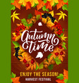 autumn season harvest festival invitation poster vector image
