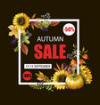 banner of autumn sale with yellow leaves vector image