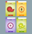 Colorful Fruits banner for app design 3 vector image vector image