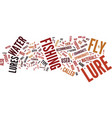 fly lures text background word cloud concept vector image vector image