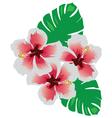 hawaii flower vector image vector image