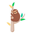 joyful sloth sitting on a branch vector image