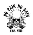 no pain gain skull with barbell in teeth vector image vector image