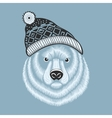 bear hipster in knitted hat