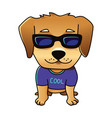 cute cool dog vector image vector image