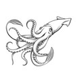 giant squid engraving vector image vector image