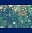 texture of wall decorated with christmas tree pine vector image