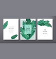 tropical trendy greeting invitation card template vector image vector image