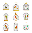 colorful birds in cages set vector image