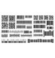 bar code product barcodes and qr codes vector image