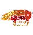 cuts of pork - meat diagrams vector image vector image