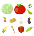 different kinds of vegetables cartoon icons in set vector image vector image