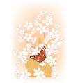 flowering branches of cherry in a basket vector image vector image