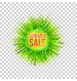 Flyer with sale and blur grass vector image vector image