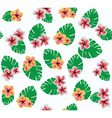 hawaii flowers vector image vector image