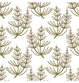 colored equisetum pattern in hand drawn style vector image vector image