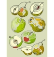 Fruit set hand drawn apples and pears vector image vector image