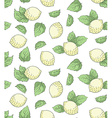Lemon seamless pattern hand drawing vector image