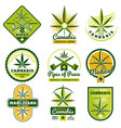 marijuana hashish drug medicine logos and vector image vector image