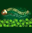 irish holiday saint patricks day banner vector image