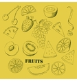 Background with fruit-06 vector image vector image