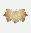 gold hop cone engrawing beer brewing vector image vector image