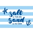 Salt in the air sand in my hair summer card vector image