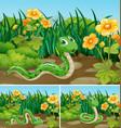 three scenes with green snake in garden vector image